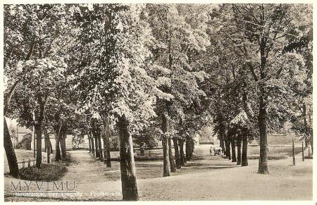 Promenada - 1936 r.
