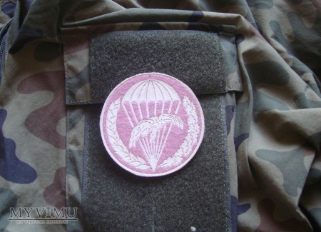 6 Pomorska Dywizja PD - id