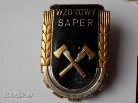 Duże zdjęcie WZOROWY SAPER-1950-duża