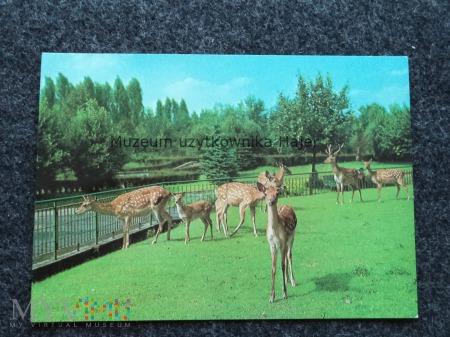 CHORZÓW - KATOWICE Śląski Ogród Zoologiczny