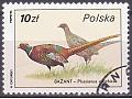 Zobacz kolekcję Znaczki pocztowe - Polska, 1986 r.