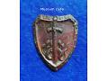 Freikorps Selbstschutz Oberschlesien-odznaka