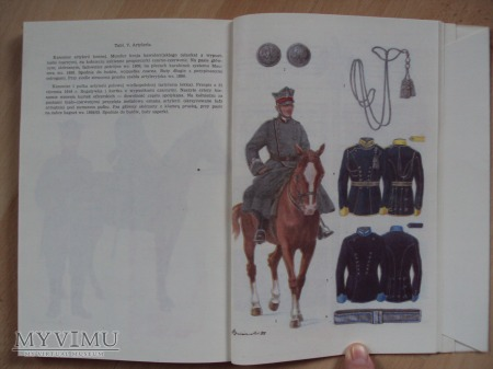 Barwa i broń Siły Zbrojnych Wielkopolski 1919-1920
