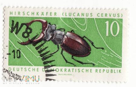 Znaczek pocztowy -Zwierzęta 13