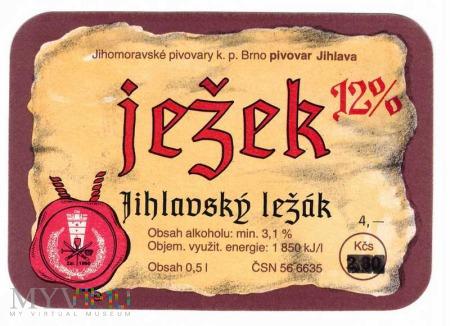 Jihlava, jeżek