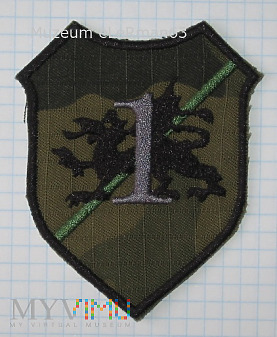 1 Batalion Czołgów 10 BKPanc. Świętoszów