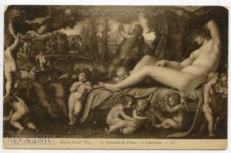 Carrache Carracci - Śpiąca Venus