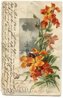 1902 Catharina C. Klein kwiaty z Wrocławia