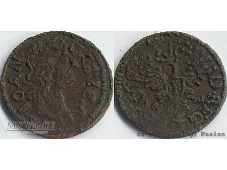 szeląg koronny 1663 12