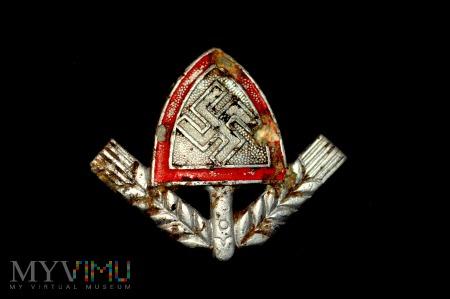 Duże zdjęcie Odznaka RAD