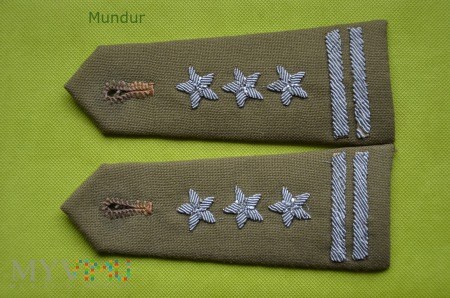 Naramienniki z oznakami stopnia - pułkownik