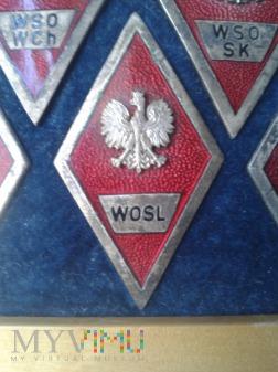 Odznaka absolwenta W S O L