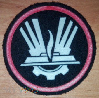 Duże zdjęcie Rodzaj wojsk i służb, wojska inżynieryjne