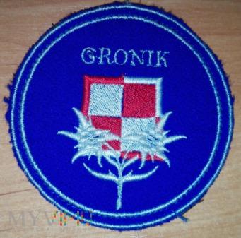 Woj. Ośrodek Szkoleniowo-Kondycyjny WOSzK GRONIK
