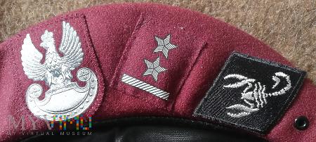 5 BPanc - pluton specjalny kompanii rozpoznawczej