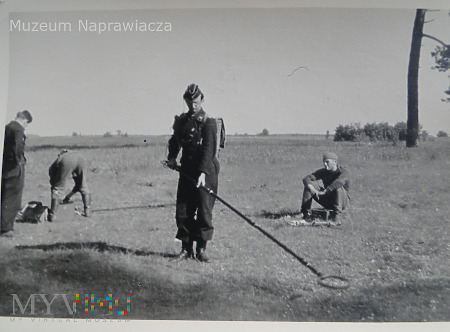 Panzer-Pionier-Bataillon
