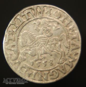 Półgrosz 1558