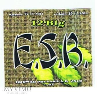 e.s.b.