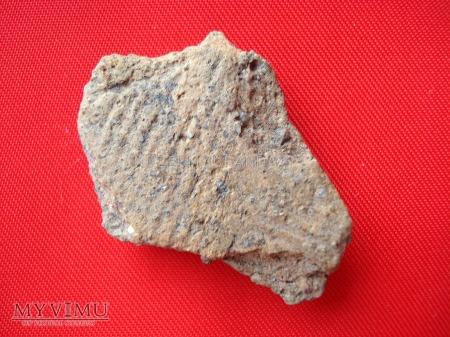 Fragmenty glinianych naczyń 5