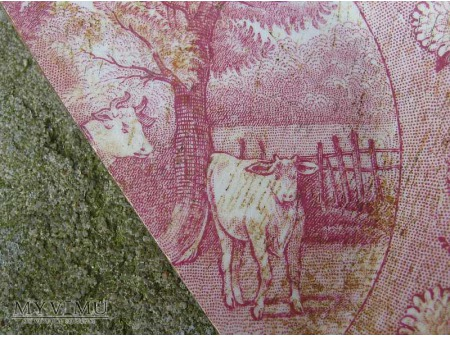 Dojarka -wiejski pejzaż