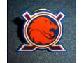 Holenderska Federacja Hokeja na Lodzie