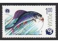 Ryby i wędkarstwo w polskiej filatelistyce
