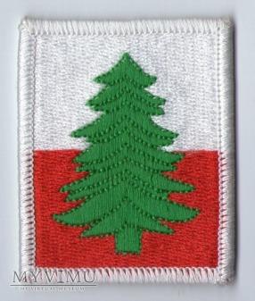 Emblemat 22 Karpacka Brygada Piechoty Górskiej