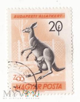 Znaczek pocztowy -Zwierzęta 16