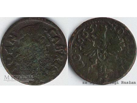 szeląg koronny 1663 13