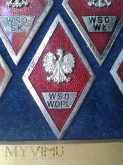 Odznaka absolwenta W S O W O P L