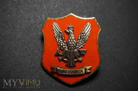 Odznaka Archiwum Wojskowego w Oleśnicy Nr:56
