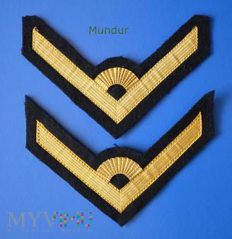 Dystynkcje do munduru MW -młodszy chorąży