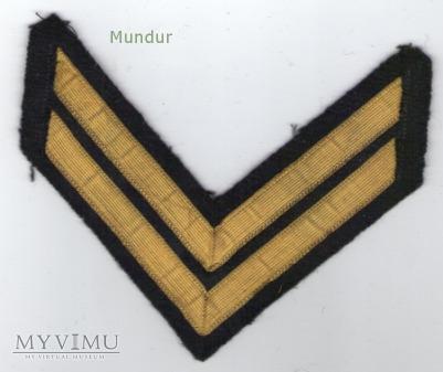 Dystynkcje do munduru wyjściowego MW -st.bosman