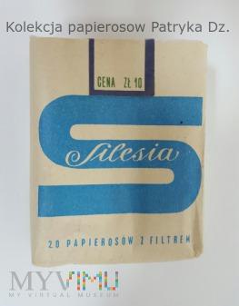 Duże zdjęcie Papierosy Silesia 1981 rok.