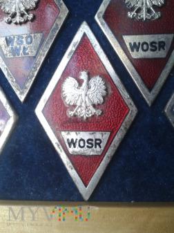 Odznaka absolwenta W O S R