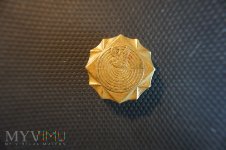 Odznaka Strzelecka - brązowa