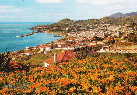 Funchal - Western View