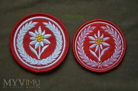 Oznaka: 1 Batalion Strzelców Podhalańskich 21 BSP
