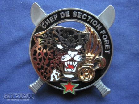 Odznaka C.E.F.E/CHEF DE SECTION