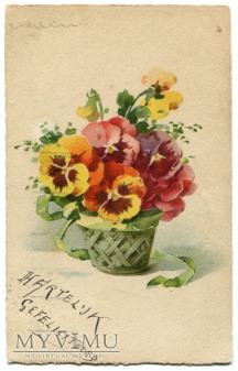 Duże zdjęcie Catharina C. Klein kwiaty Flowers Bratki Pansy