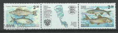 Peipsi-Pihkva järv
