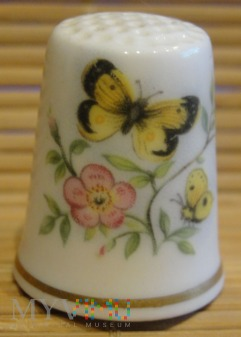 (5) ROYAL WORCESTER-motyle