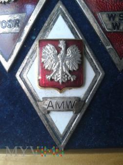 Odznaka absolwenta A M W