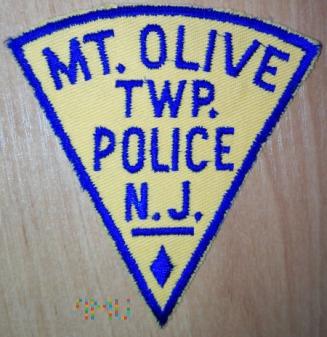Mt. Olive TWP policja