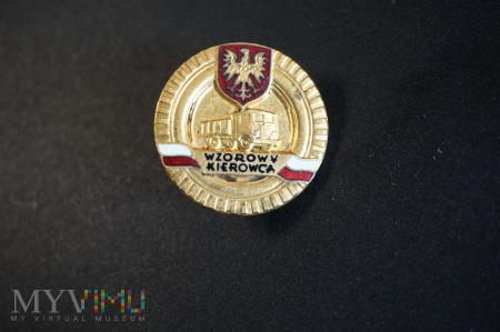 Duże zdjęcie Odznaka honorowa - Wzorowy Kierowca Nr:573