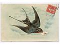 Zobacz kolekcję Artystyczne i okolicznosciowe z ptakami