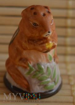 naparstek -wiewiórka ziemna