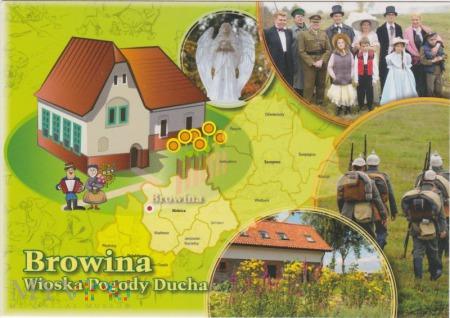 Borowina