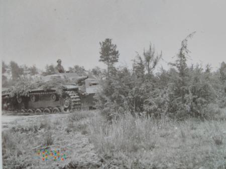 Sturmgeschütz w Polsce 1939 (???)