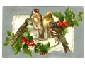 1906 Christmas Greetings Ptaszki OSTROKRZEW